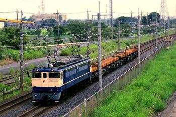 2009082117.JPG