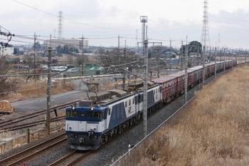 GJ1R6767.JPG