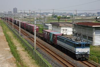 GJ1R9246.JPG