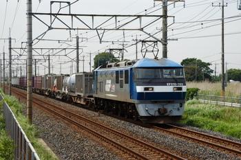 GJ1R9556.JPG